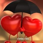 Sadece Sevgi